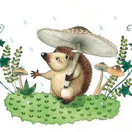 Un riccio si ripara sotto a un fungo e protende la zampa per sentire la pioggia che scende