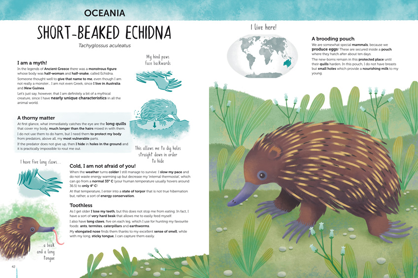 Double spread of the book Atlas of Biodiversity with an Echidna