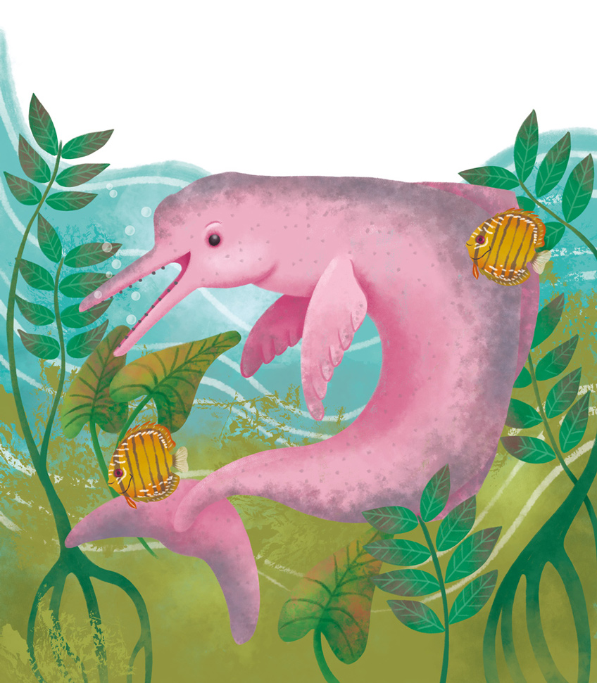 Illustration of a river dolphin
