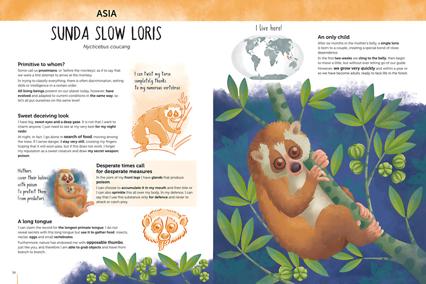 Double spread of the book Atlas of Biodiversity with a slow loris