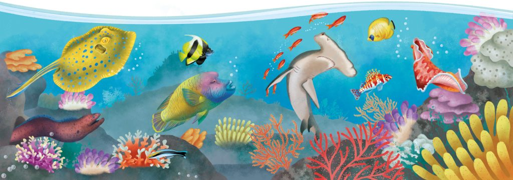 coral reef illustration: hammerhead shark, ray, corals and colorful fishes