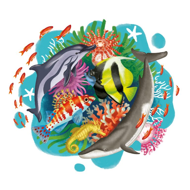 round colorful illustration of sea creatures